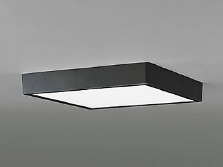 OL251740 [ブラック]