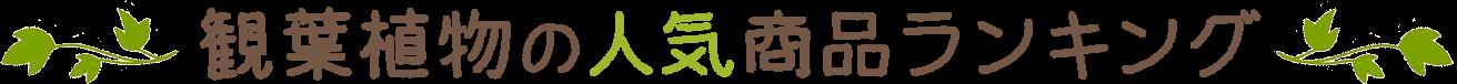 観葉植物の人気商品ランキング