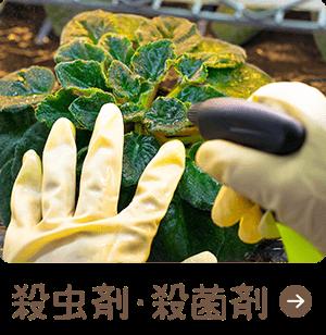 殺虫剤・殺菌剤