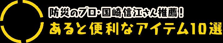 防災グッズ 応用編2:防災のプロ・国崎信江さん推薦!あると便利なアイテム10選