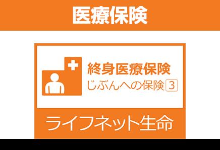 終身医療保険 じぶんへの保険3