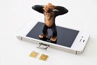 格安SIMを選ぶポイントとおすすめ8選を紹介!