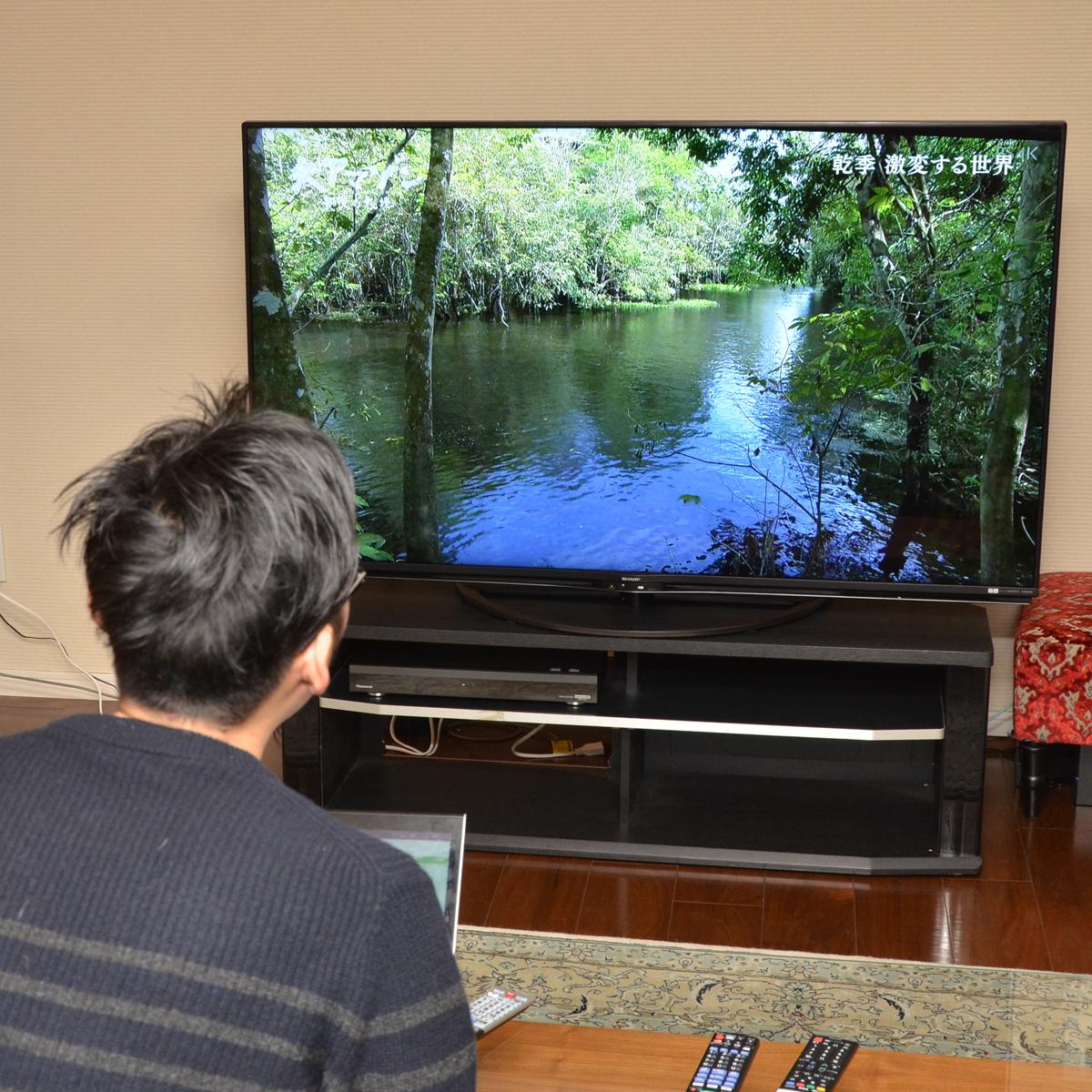 今買うならどれ? 東芝、シャープ、三菱電機の新4K衛星放送チューナー内蔵テレビをガチ比較