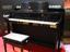 【ホビー】生ピ感スゴい! カシオのハイクオリティ電子ピアノが第二世代に進化