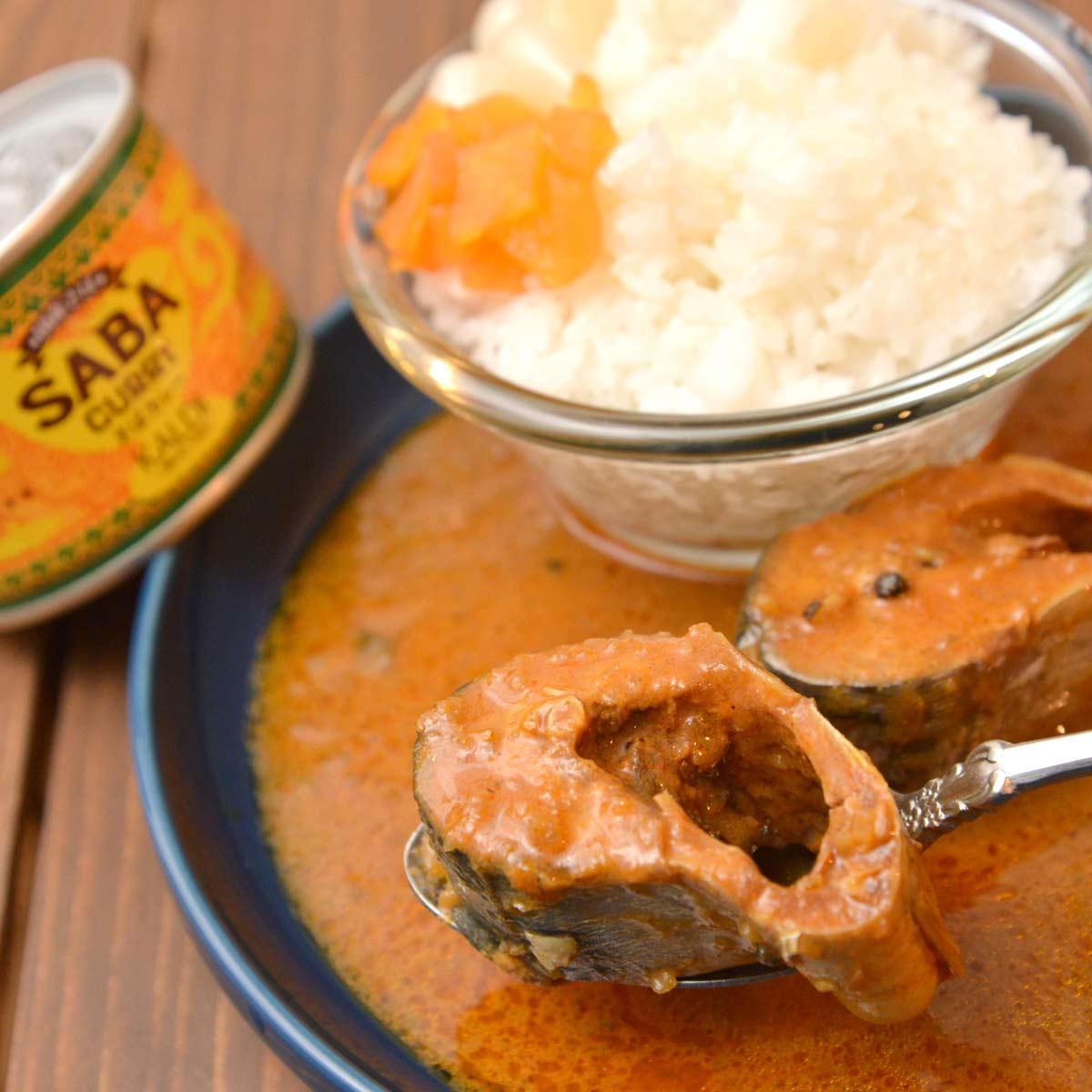 《実食》「カルディのカレー」が激ウマ! 本格派PBレトルト10種を比較レビュー