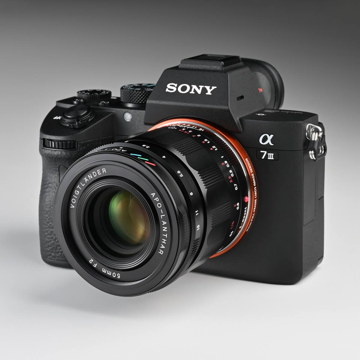 フォクトレンダー史上最高の標準レンズ「APO-LANTHAR 50mm F2 Aspherical」実写レビュー