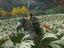 PS4「Ghost of Tsushima」はなぜ評価が高いのか。その魅力に迫る