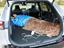 電気ケトルや電気毛布が使えるって最高!トヨタ「RAV4 PHV」で車中泊