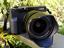 【カメラ】富士フイルム「X-E4」と「XF16mmF1.4 R WR」で飯田橋と善福寺川の春を探す