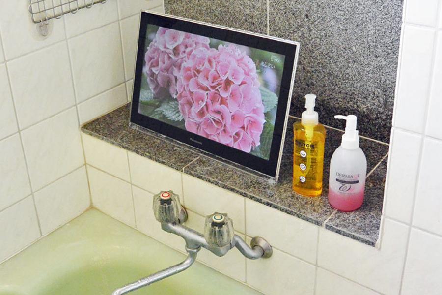 洗剤でザブザブ洗える! ポータブルテレビ「プライベート・ビエラ」を家で使ってみた