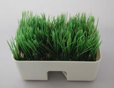 緑の芝生にデジタルガジェット。コードを隠せる癒やしグッズ