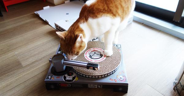 DJ NEKOO誕生? 猫がDJになるターンテーブル型爪とぎ