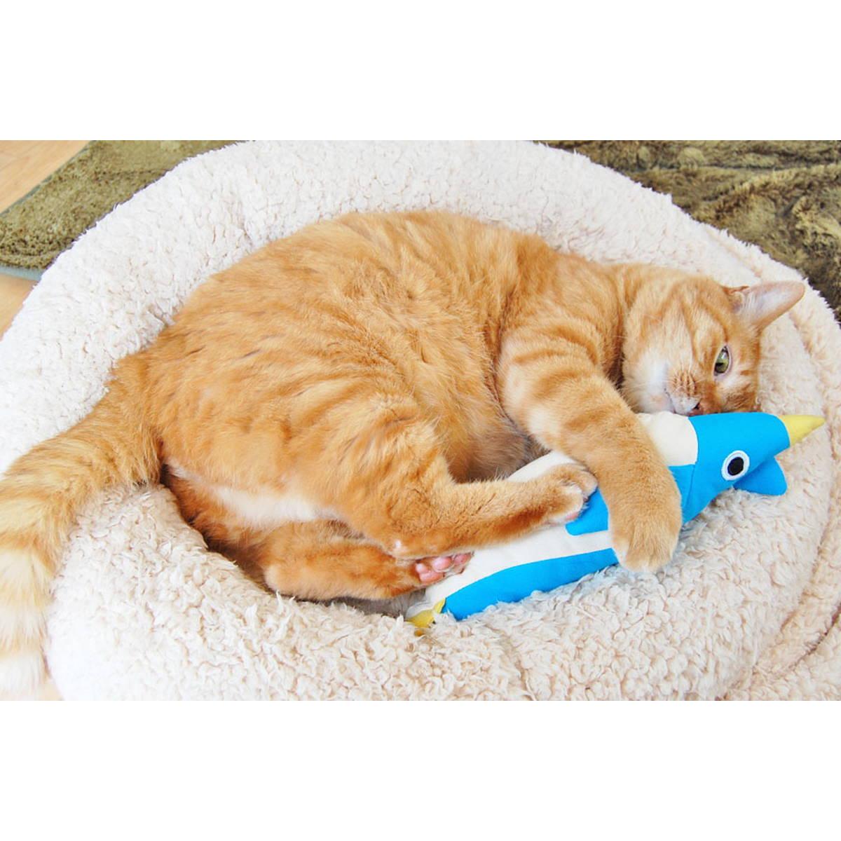猫が喜ぶおもちゃはこれ! 試してわかった傑作猫用グッズ20選【猫を愛するすべての人へ】
