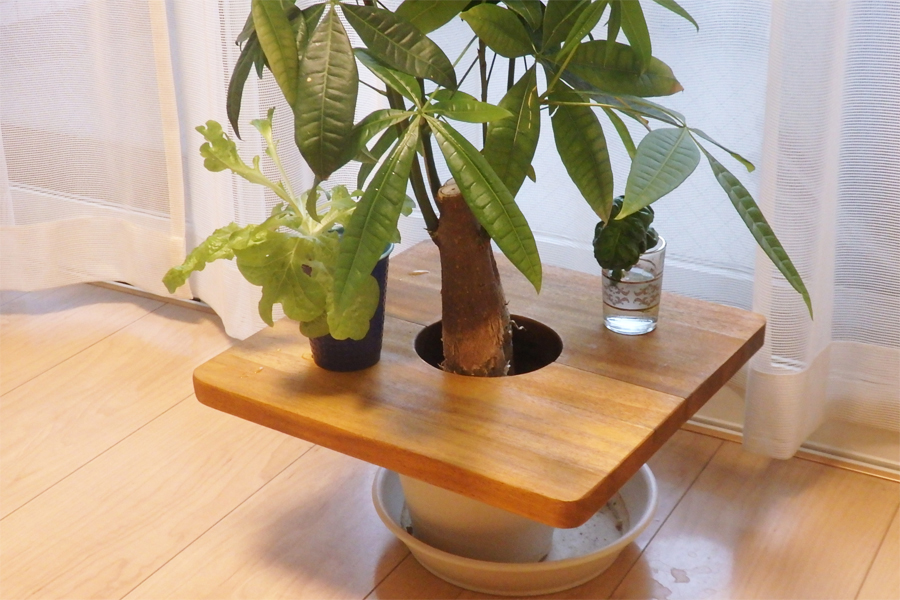 """植木鉢が""""テーブル""""になっちゃう! 目から鱗の便利グッズ"""