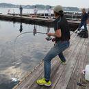 話題の海上釣り堀で「海上釣堀 コアスペックII」の手応えを堪能!