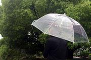 ビニ傘は卒業! おしゃれで丈夫な「プラスチック傘」はいかが?