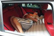 車の中にベッド!? 車中泊が快適になる後部座席用のエアーベッド