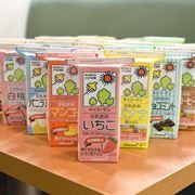 キッコーマン「豆乳アイス」全33種を食べ比べ! 1番おいしい味はどれ?