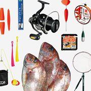 産卵期ならではの醍醐味! 魚の王様「真鯛」を陸っぱりから釣る2つの方法