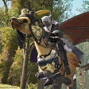 PS4「FF14」レビュー。初心者が今からでも十分楽しめるポイントをまとめてみた