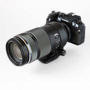 はじめての野鳥・動物撮影にピッタリ!「M.ZUIKO DIGITAL ED 100-400mm F5.0-6.3 IS」レビュー