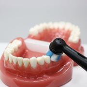 高い歯垢除去力を誇る電動歯ブラシ「オーラルB iO」シリーズに価格を抑えた新モデル登場
