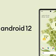 新デザイン採用のAndroid 12が「Pixel 3」シリーズ以降でDL可能!