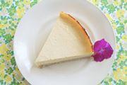 ハイパワーミキサー「バイタミックス S30」で作るベジチーズ風ケーキ