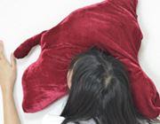 そっちの意味か!「死んだように眠れる枕」を使ってみた