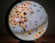 建造物や生き物も学べるオシャレなライトアップ地球儀