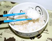 食欲を減退させるダイエット応援箸でいろいろ食べてみた