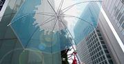 「富士傘 」と書いて「ふじさん」。とにかく縁起のいいビニ傘