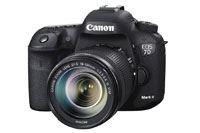 年末・年始はカメラ&レンズのキャッシュバックが目白押し!