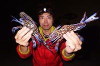 こんな簡単にカニが釣れるとは! 投げるだけの「カニ網」釣りが楽しすぎた