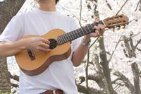 """ギターとウクレレのいいとこ取り! """"魅惑の楽器""""その名も「ギタレレ」の魅力"""
