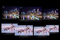 4K有機EL&液晶レグザ2021年夏モデルはAndroid TVとHDMI 2.1でネット動画もゲームもばっちり!