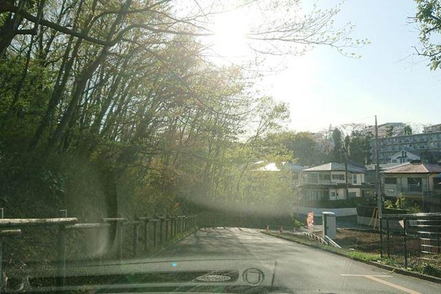 逆光では太陽光の眩しさがとてもつらくなりますが……