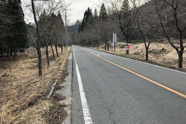 こういう見通しのいい坂道が1番つらい。e-Bikeでなければ、絶対にあきらめていた