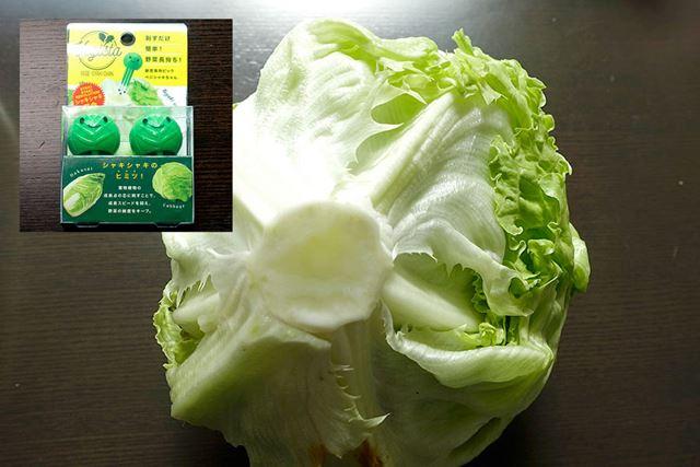 レタスやキャベツなどの葉物野菜には「ベジシャキちゃん」