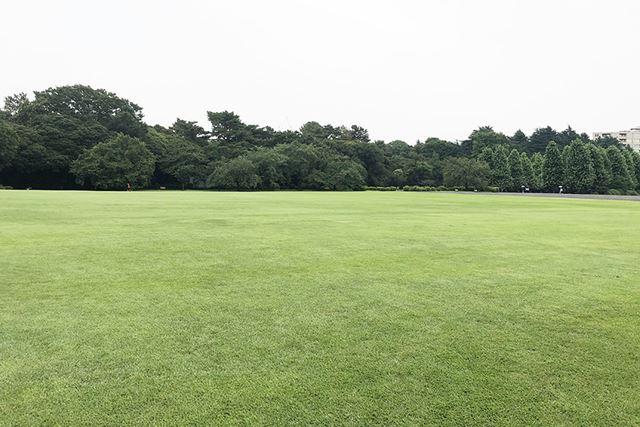 公園など広々とした野外でロケーションインジケーターは役立つ