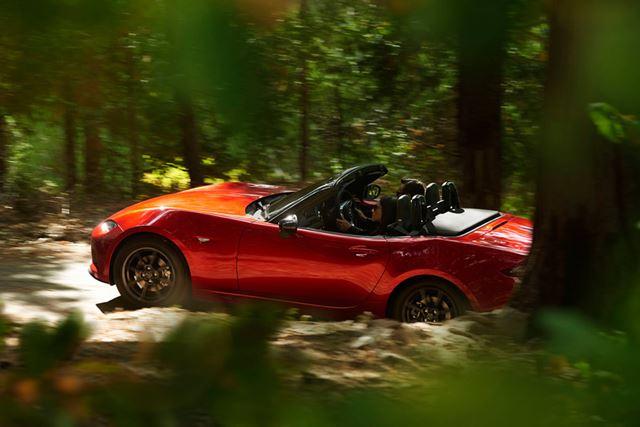ルーフを開ければ、開放感あふれるドライブを楽しめるのが「オープンカー」の醍醐味です