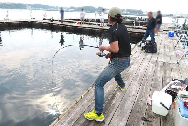 2019年春登場の注目最新ロッド(釣り竿)を持ち、話題の海上釣り堀で大物狙い。果たして釣果は?