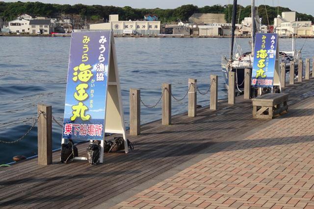 三崎漁港にある、三浦市民ホール1Fで受け付け後、すぐ前にある船着場へ