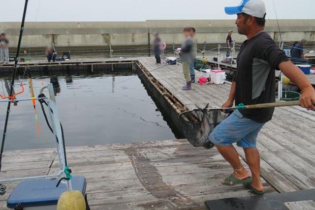 放流直後が釣り上げるチャンス