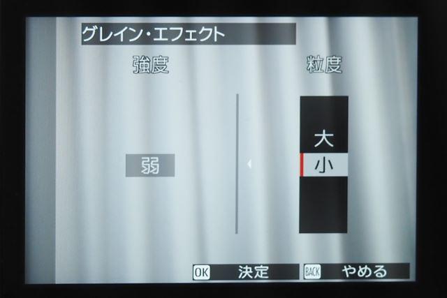フィルムのような粒状感を再現するグレイン・エフェクトは強度と粒度を調整できるようになった
