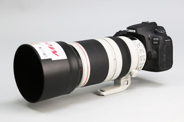 キヤノン「EOS 90D」に「EF100-400mm F4.5-5.6L IS II USM」レンズを装着