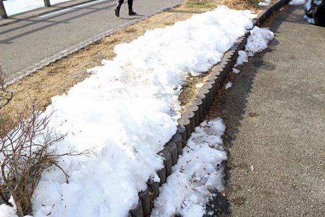 しかし、見ていただきたい。駐車場に残る雪を……
