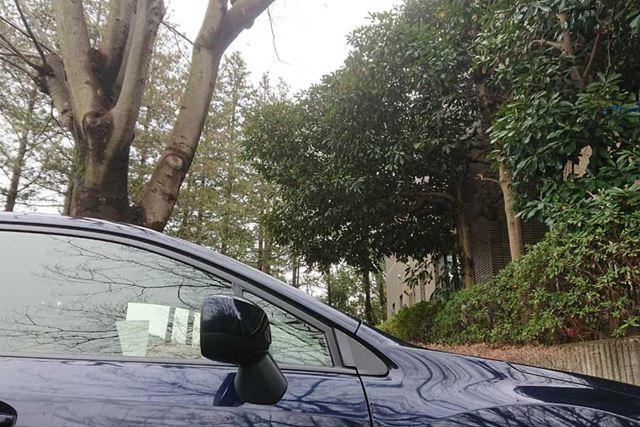屋外駐車場などで樹木の下に停めるときは、樹液や鳥のフンなどが付着する可能性があります