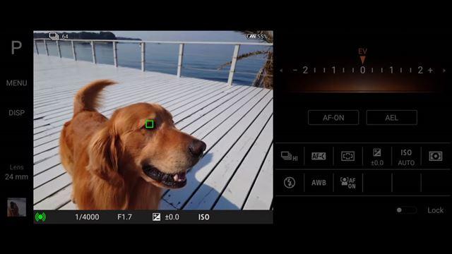 人物だけではなくペットの瞳も認識可能となった「リアルタイム瞳AF」も「Photography Pro」に搭載される