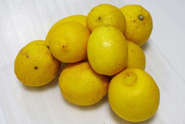 1�s購入したところ、大小のレモン約9個が届きました(数や大きさは注文ごとにバラつきがあります)